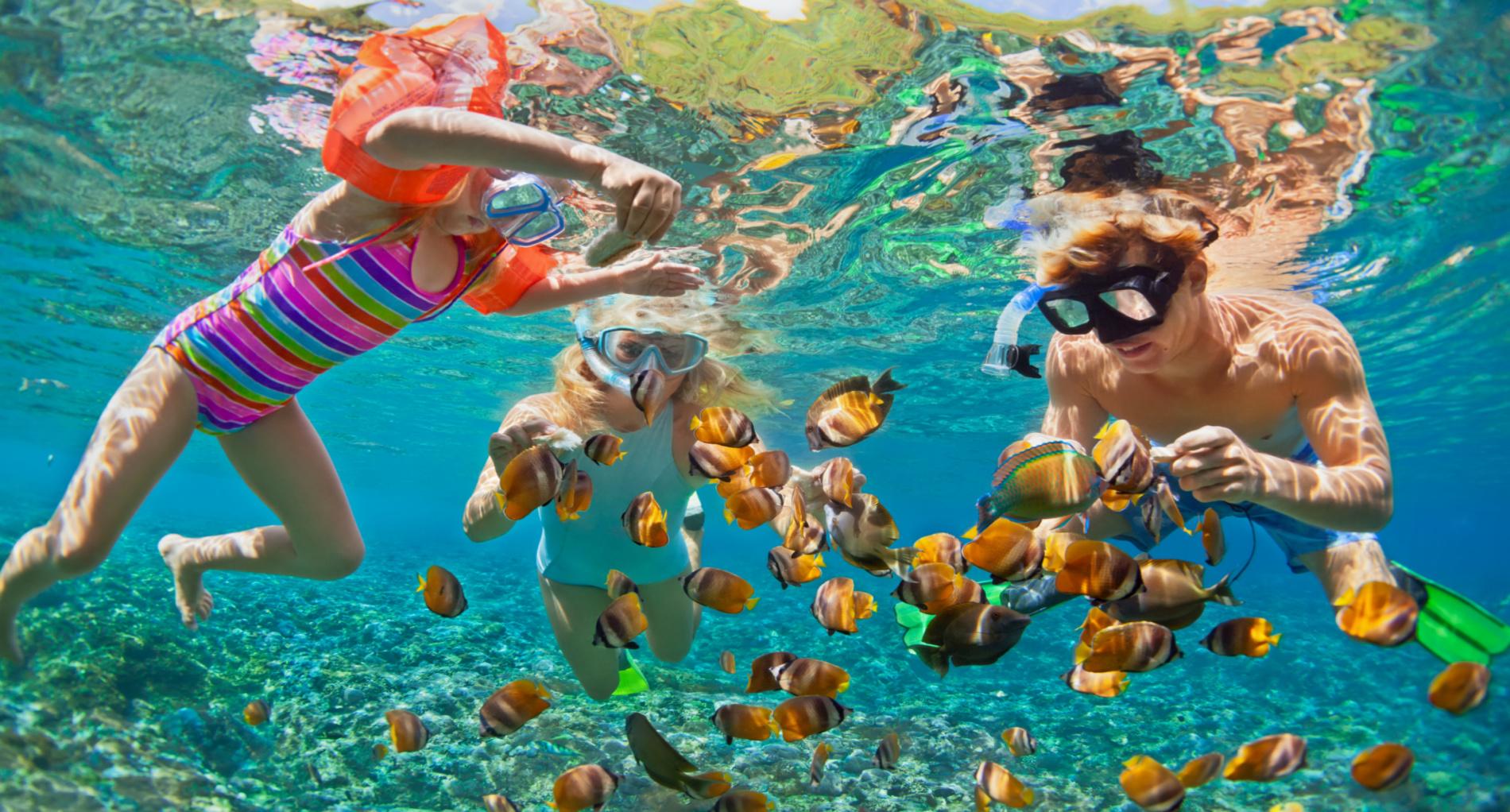 family_snorkeling_slider